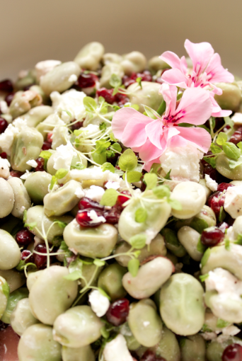 Good Food Friday : My broad bean and pomegranate salad!