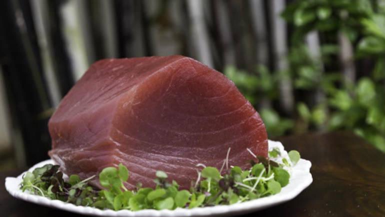 Seared tuna and warm green salad