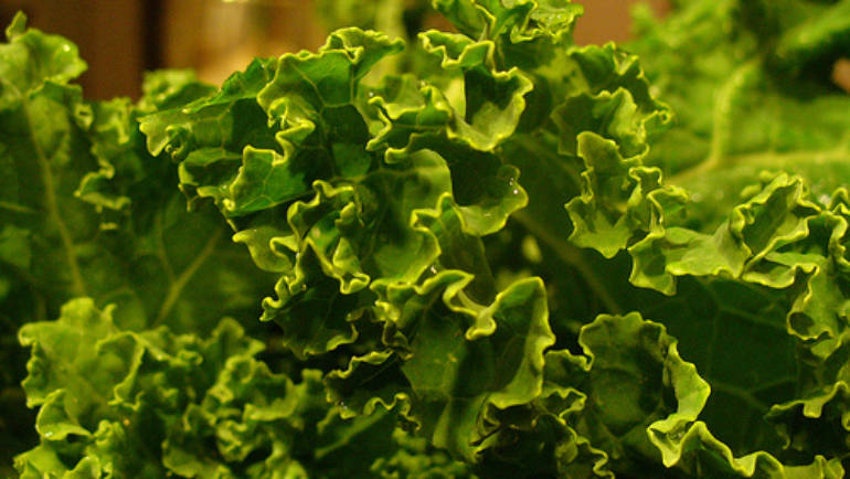 Good Food Friday : Nadia's Kale Chippies
