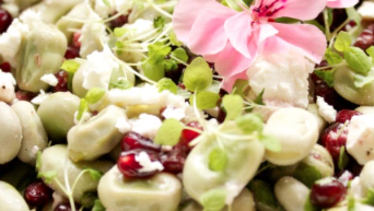 Good Food Friday : My broad bean and pomegranate salad!