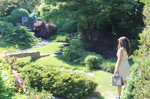 How to not get lead up the garden path – because you're not Alice in Wonderland.