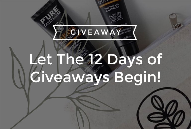 Let The 12 Days of Giveaways Begin!