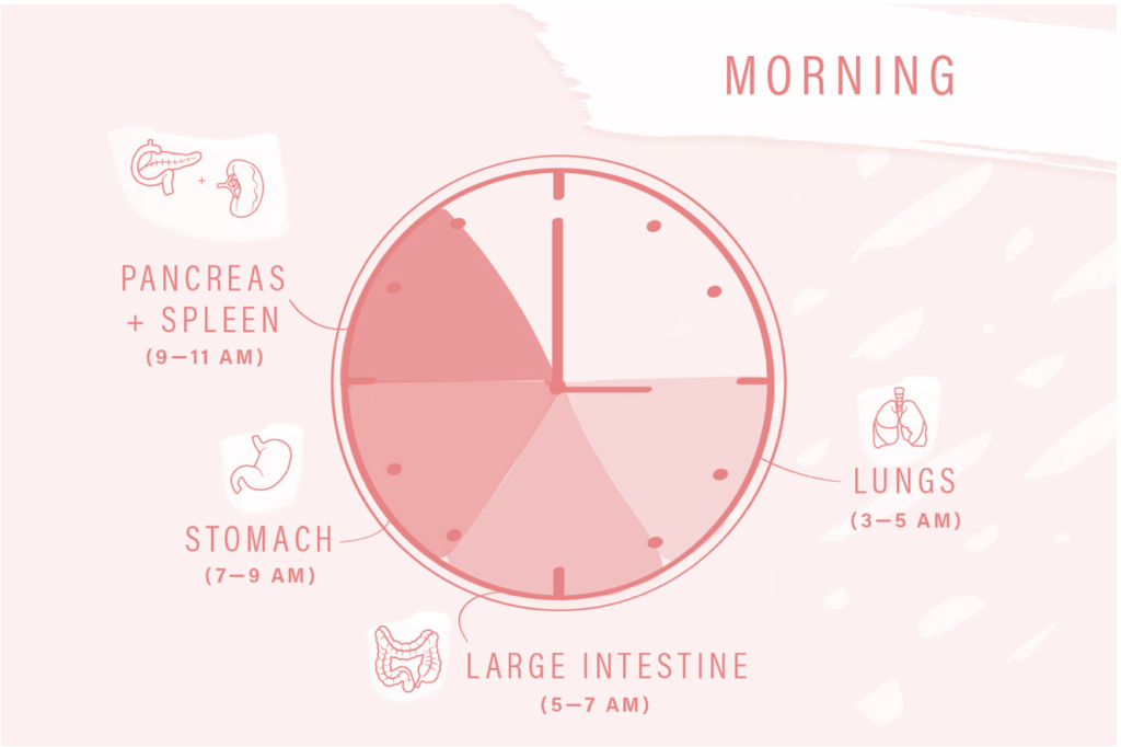can't sleep between 3am and 11am - the corresponding organs will reveal what's going on
